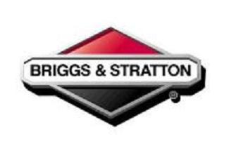 Ремонт оборудования BRIGGS & STRATTON
